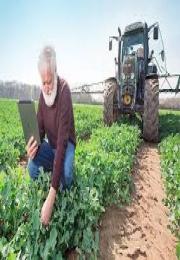 Como a Inteligência Artificial vai transformar o agronegócio