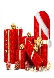 Sebrae-SP orienta lojistas para lucrarem mais no Natal