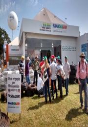 NaanDanJain, empresa situada em Leme, participou como expositora na Agrishow