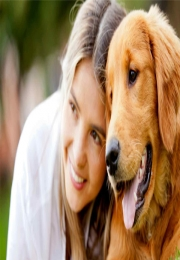 5 lições de empreendedorismo que podemos aprender com os cães
